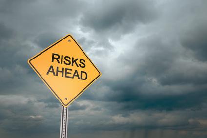 Web Service Risks